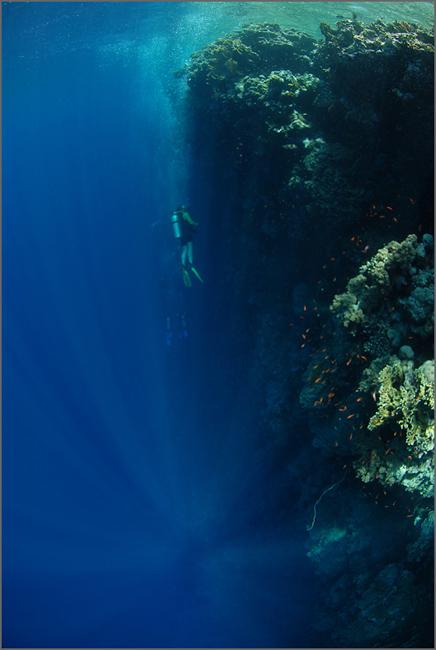 wall_dive.jpg