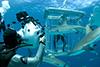 underwatertom