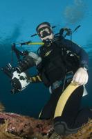Balage_diver's Photo