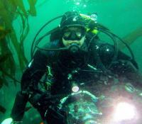 puget diver's Photo