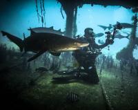 DiveWild's Photo