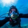 my half-life as an underwater photographer - last post by crubie