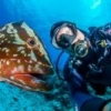 Nauticam D7000 Housing - New Port opening cover - last post by Eyematey