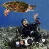 Shrimp from Komodo? - last post by Karen Honeycutt