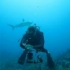 FS: Nauticam OMD EM5 Kit - last post by jdiver