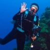 Best Hammerhead diving in SE Asia? - last post by kc_moses
