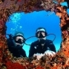 New to Diving and Underwate... - last post by ITR010342