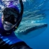 iPad version of The Underwater Photographer? - last post by bmyates