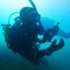 Inon Wet Lenses Wide and Close up all mounts AD LD M67 - last post by MartinSub