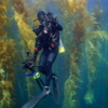 Nauticam GH4 Package - last post by Awarham