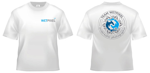 wp-shirt2010-white.jpg