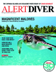 Alert Diver magazine spring 2010 issue available online Photo