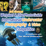 3nd Annual Wetpixel/DivePhotoGuide Photo and Video Contest Photo