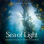 Review: Sea of Light by Richard Salas Photo