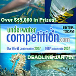 Deadline for Our World Underwater and DEEP 2007 competitions Photo