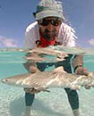 2007 Bimini Shark Encounter ready for applications Photo