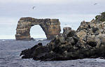 Galápagos added to UNESCO's list of World Heritage in Danger Photo