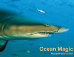 Michael Patrick O'Neill authors 'Ocean Magic' and 'Shark Encounters' Photo