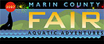 Marin County Fair underwater photography competition Photo