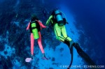 "New ""Divers Seeking Divers"" forum Photo"