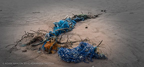 Paper quantifies plastic pollution Photo