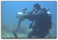 Steve Douglas on underwater video Photo