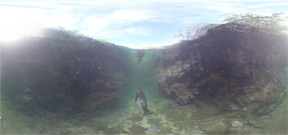 Out of the Blue: Galapagos Islands in 360 from the Washington Post Photo