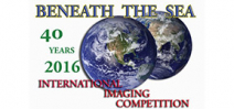 Call for entries: Beneath the Sea 2016 Photo