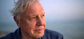 Happy Birthday David Attenborough! Photo