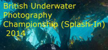 Call for entrants: BSoUP Splash-In 2014 Photo