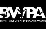 Call for entries: British Wildlife Photography Awards Photo