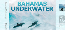 Book Release: Bahamas Underwater by Shane Gross Photo