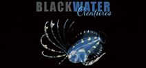 Announcing Blackwater Creatures by Linda Ianniello and Susan Mears Photo