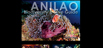 Anilao: Biodiversity and dive guide launched at DRT Show Photo
