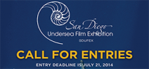 Call for entries: SDUFEX 2014 Photo