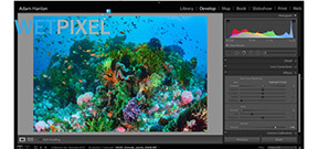First Look: Adobe Creative Cloud 2015 Photo