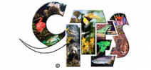 CITES 2013: The results Photo