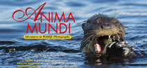 Issue 30 of Anima Mundi magazine available Photo