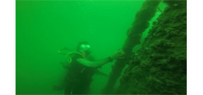 A diver's POV of diving the GOM Dead Zone Photo