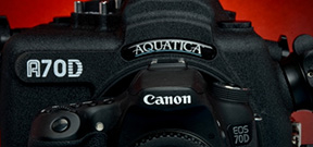 Aquatica announces the A70D housing Photo