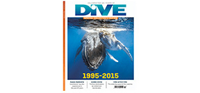 DIVE celebrates 20 years Photo