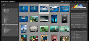 Adobe guide to Optimizing Lightroom Performance Photo