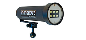 Mangrove releases a 6750 lumen video light Photo