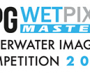 Announcing the DPG/Wetpixel Masters Underwater Imaging Competition 2020 Photo