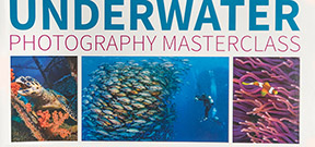 Book release: Underwater Photography Masterclass by Alex Mustard Photo