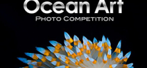 Ocean Art 2019 is open for entries Photo