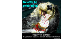 One year anniversary of California Marine Parks Photo
