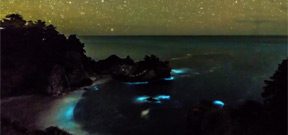 A glowing plankton bloom in Big Sur, California Photo