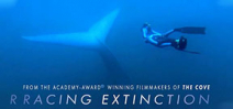 Racing Extinction goes to air on 2 December Photo
