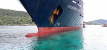 Recovery of Raja Ampat reef damaged by cruise ship up to 100 years Photo